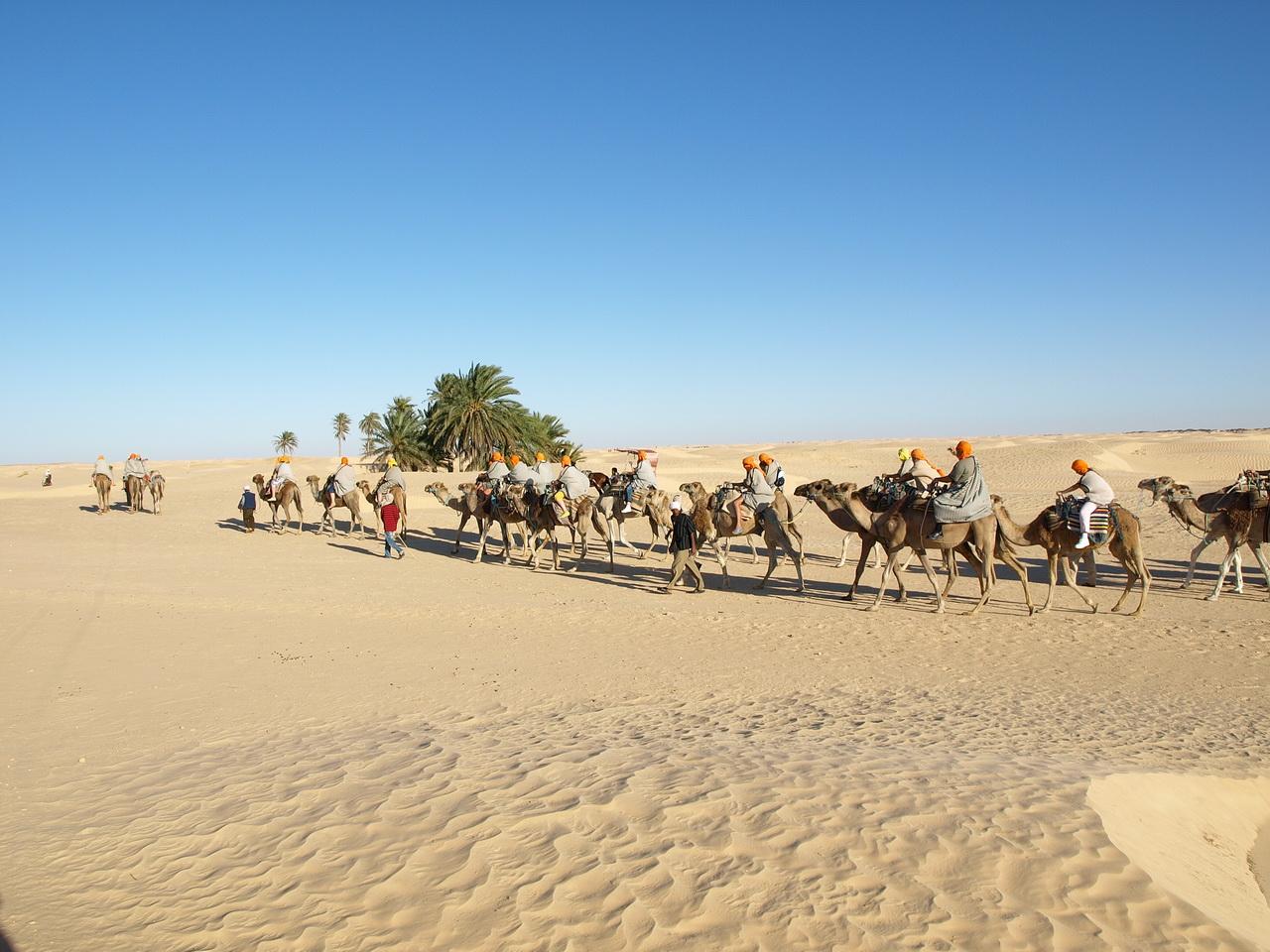 sahara tunisia
