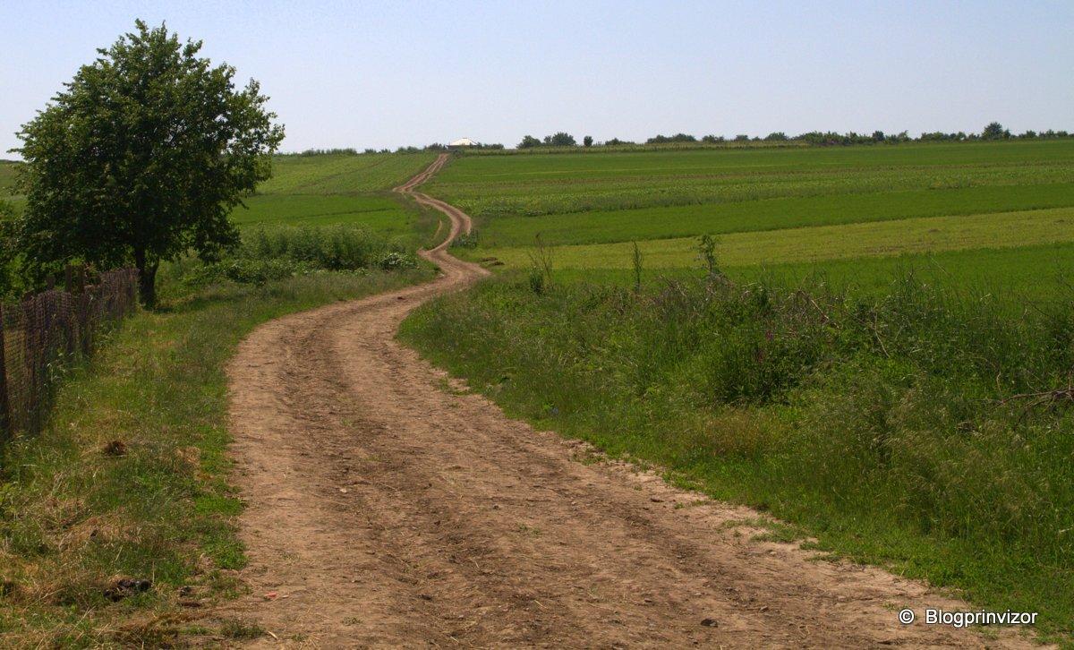 drumul de la biserica catre satul nou