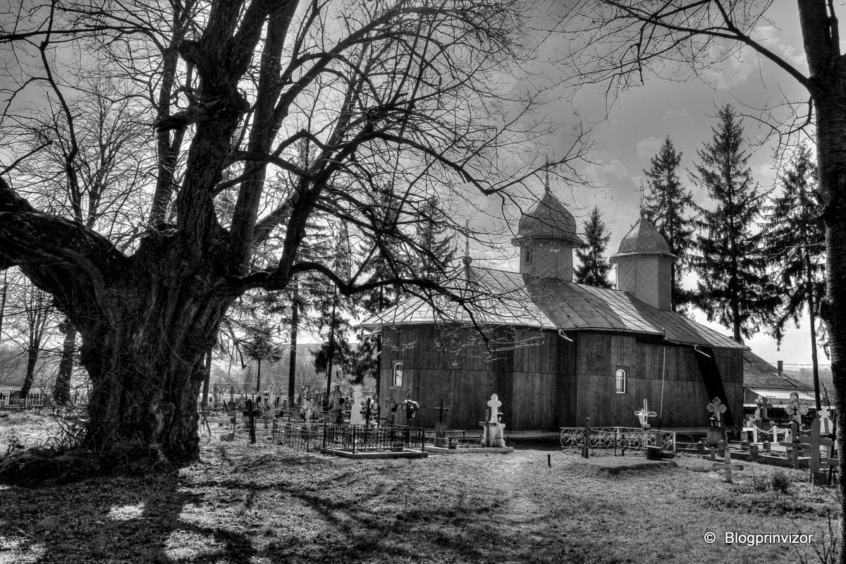Biserica de lemn din Târzia 1876